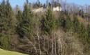 8 – Razvaline ortneškega Starega gradu